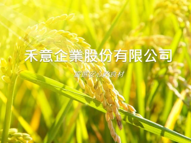 禾意企業股份有限公司RWD響應式網站設計